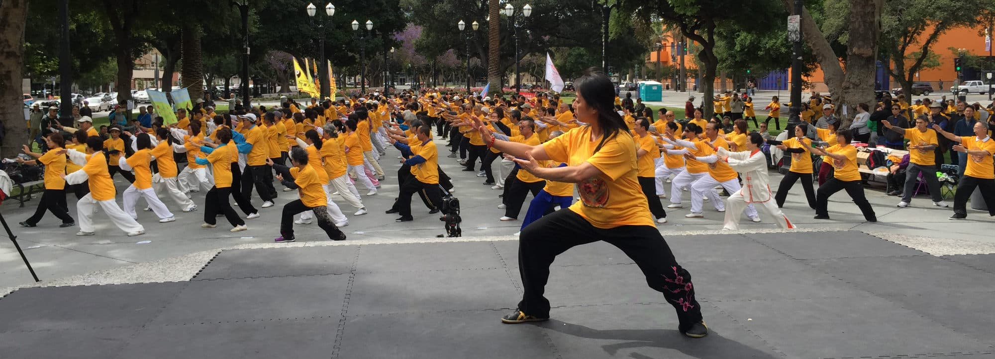 Tai Chi Classes Header